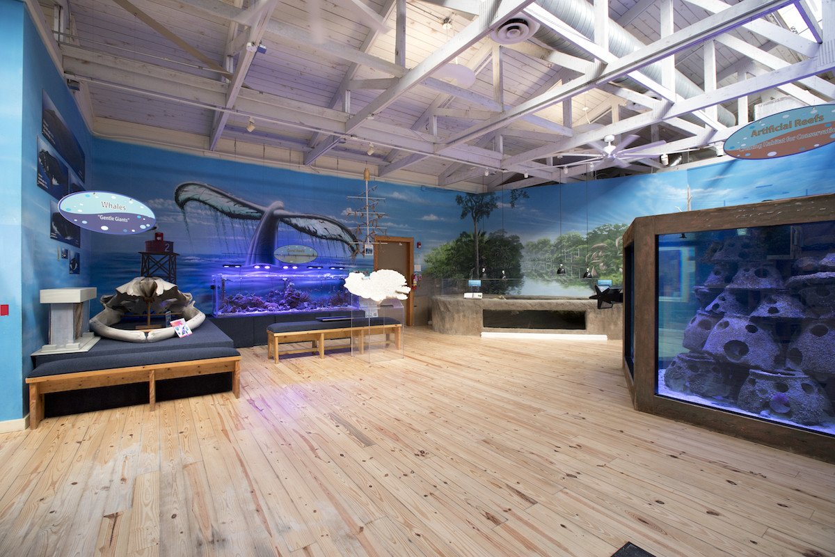 projects/edu/marine_science/marinesciencecenter1.jpg