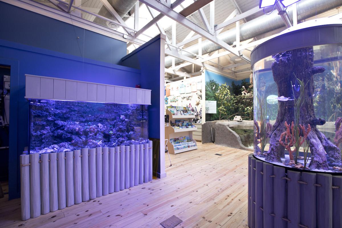 Marine Science Center